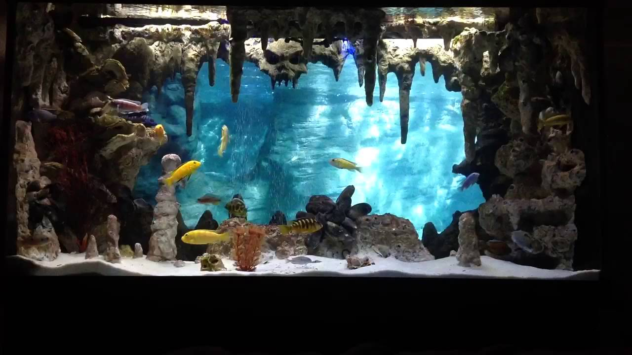 Diy Underwater Cavern Aquarium With 3d Background Youtube