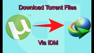 How to Download Torrent files with IDM-2019
