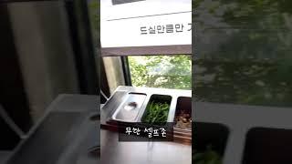 경기도 광주 털보 셀프 바베큐 한입만 먹어보기~ #바베…