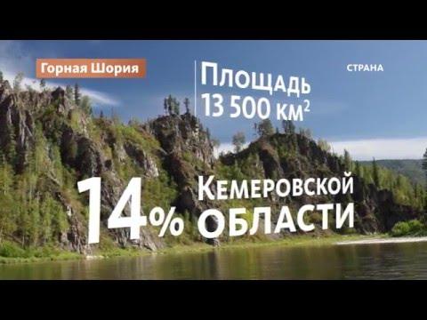 знакомства кемеровская область