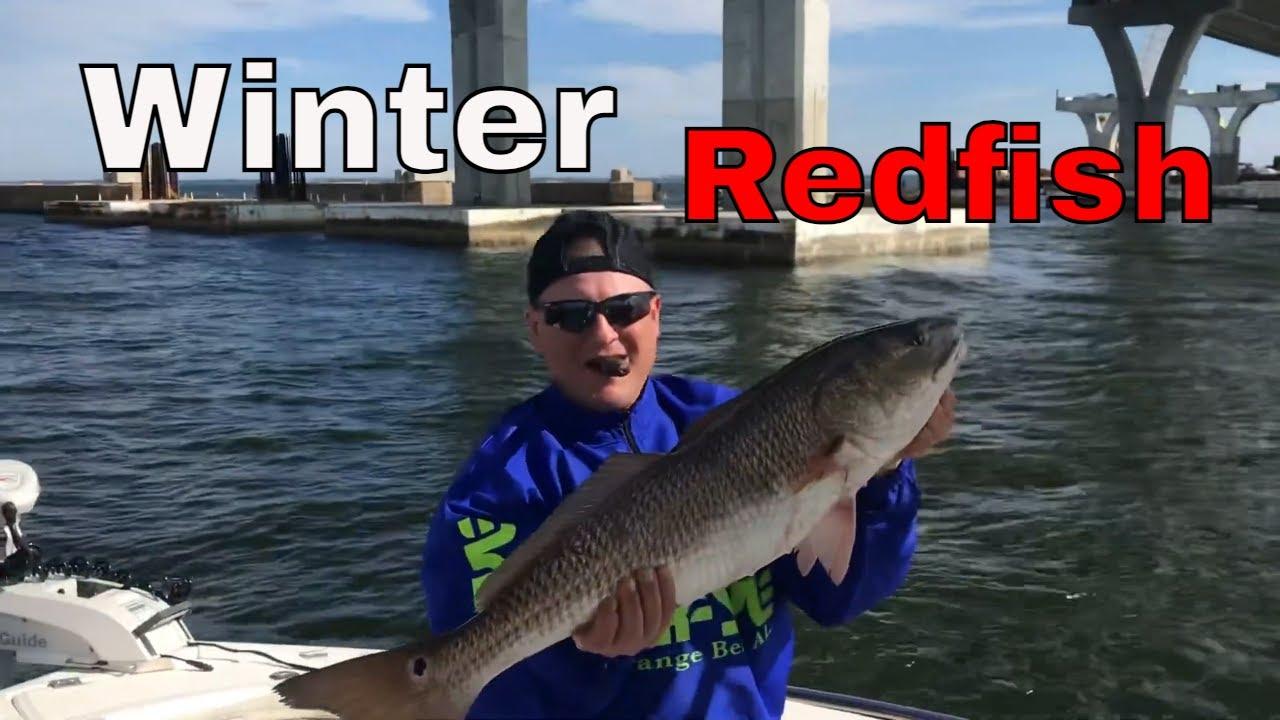 Pensacola Red Fish