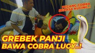 GR3BEK RUMAH PANJI, BAWAIN C0BRA LUCY.. AUTO GIRANG..! | Feat. Panji Petualang