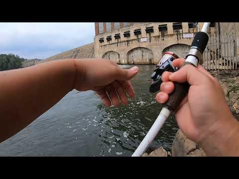 Lake Hickory Stripedbass Fall Fishing