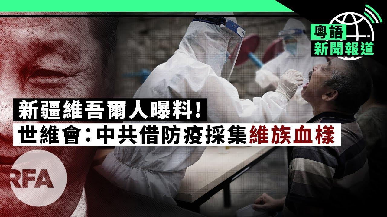 建制派強推港版健康碼;肺炎索賠第一案告上高院 | 粵語新聞報道(08-13-2020)
