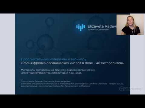 Органические кислоты 60 метаболитов интерпретация Радевич Е.А.