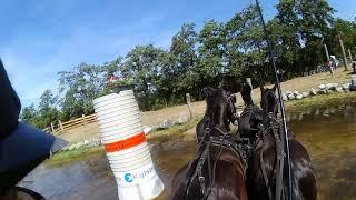 Driesum Wouterswoude 27 juli 2018 obst 3