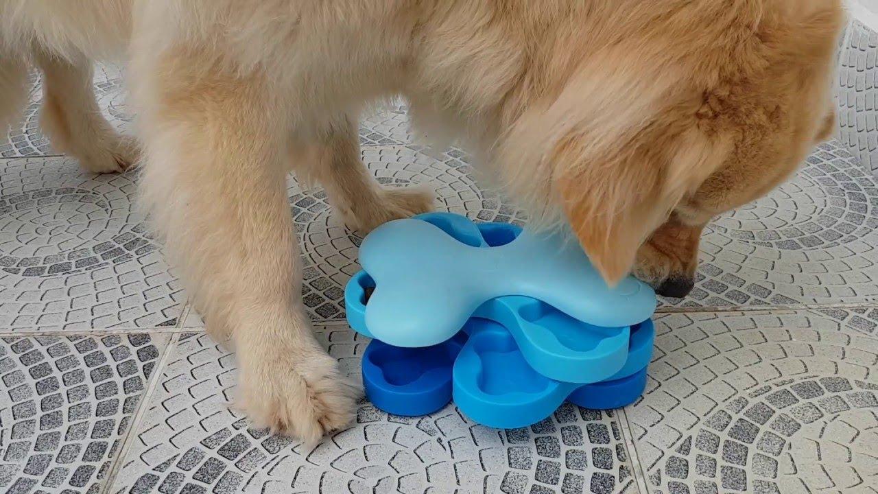 Swiveling Dog Bowl Kibble Hunt