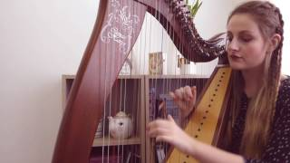 I Don't Wanna Live Forever - Taylor Swift & Zayn (Harp Cover)