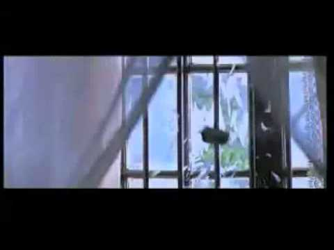 Rang Rasiya Trailer