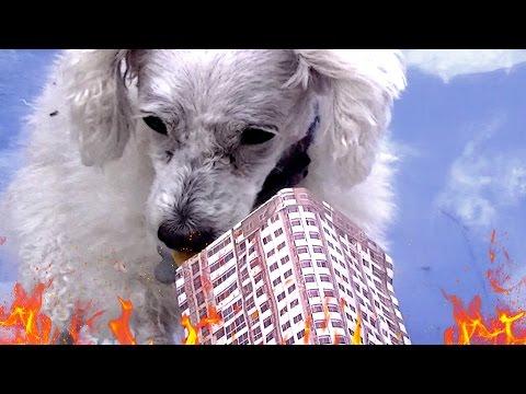 Dogzilla Attacks New York City