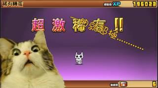 【紙箱】貓咪大戰爭 超級貓咪季11連抽