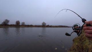 ЕЁ называют у нас ЗАПРЕЩЕННОЙ Микроджиг на Оке Рыбалка с разных точек