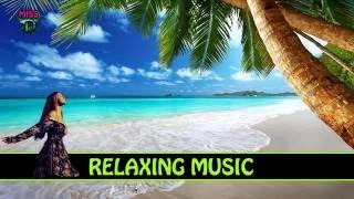 3 HOURS Relaxing Sound Background Music Punk The Woods