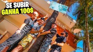 DESAFIO IMPOSSÍVEL  ✶se subir o coqueiro ganha 100 reais ✶