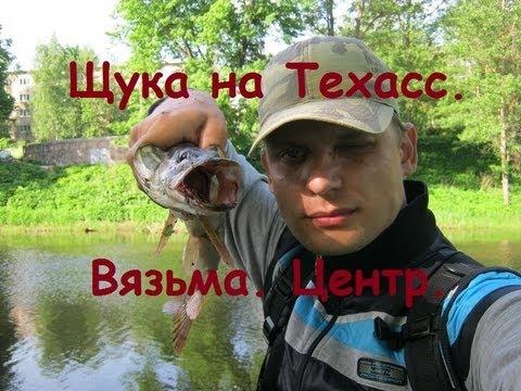 Прогноз клева рыбы в Вязьме