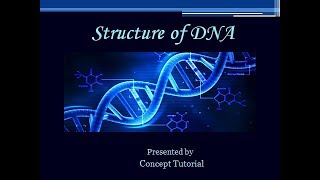 Structure of DNA | HINDI