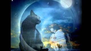 Когда я стану кошкой.Автор клипа Lusy Diuk.