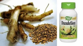Dandelion Root  Cancer Cure At No Cost!|CANCER treatment with DANDELION Root TEA