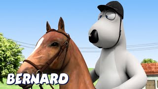 Download Bernard Bear | Dressage AND MORE | Cartoons for Children | Full Episodes
