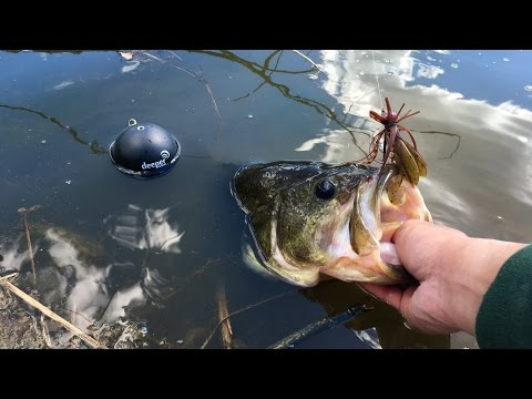 Exploring New Waters And Finding Big Bass!