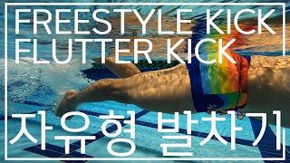 자유형 발차기 기초동작 freestyle kick / …