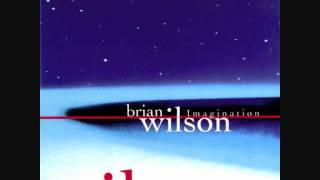Watch Brian Wilson Dream Angel video