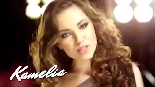 Смотреть клип Puya Ft. Kamelia - V.I.P.
