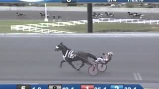 Wiggle It Jiggleit (1:49:0) Fastest Mile In History At Harrington