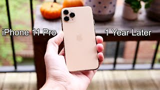 iPhone 11 Pro 1 Year Later!