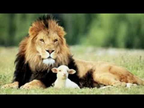 HYMN - All Creatures Of Our God And King - YouTube