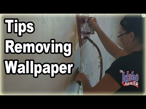steamer to remove wallpaper