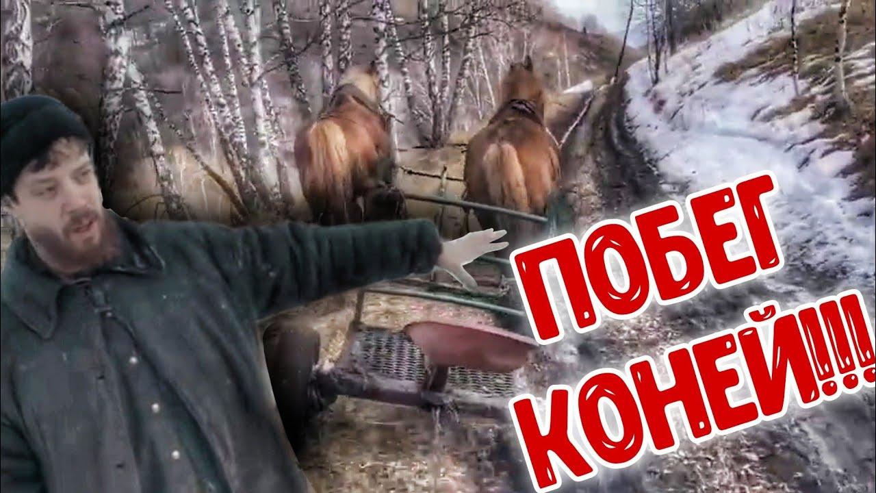 ПОБЕГ коней!!!
