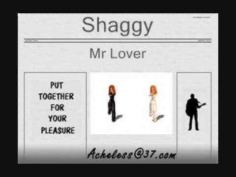 Shaggy  Mr Lover