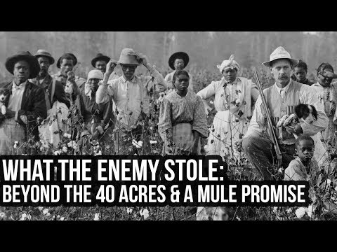 What The Enemy Stole: Beyond The 40 Acres & a Mule Promise