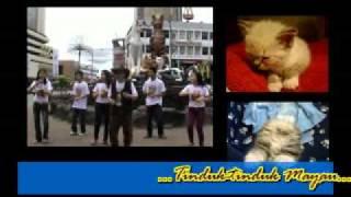 Bony Bibo_Tinduk-tinduk Mayau