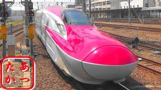 【秋田新幹線 こまち】E6系 秋田新幹線 こまち 秋田駅 Japanese Bullet Train - Shinkansen
