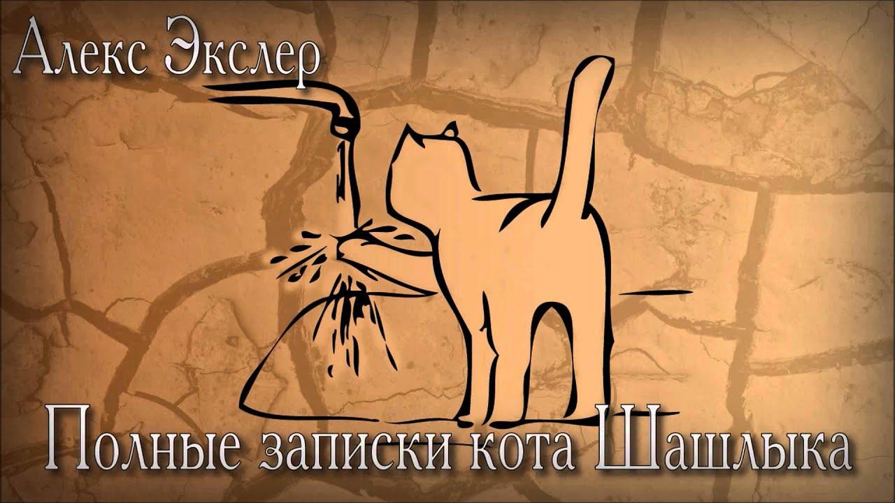 Найти дневник кота