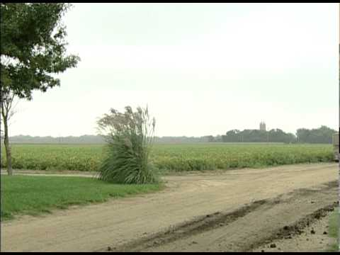 Real Stories: Diversified Farm Protected by Crop Insurance