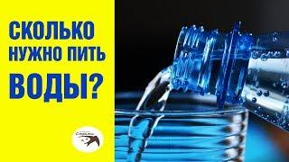 Сколько нужно пить воды? Узнайте, сколько нужно пить воды в день!