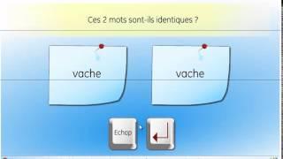 Tinfolec (test informatisé de lecture) - Edition GERIP
