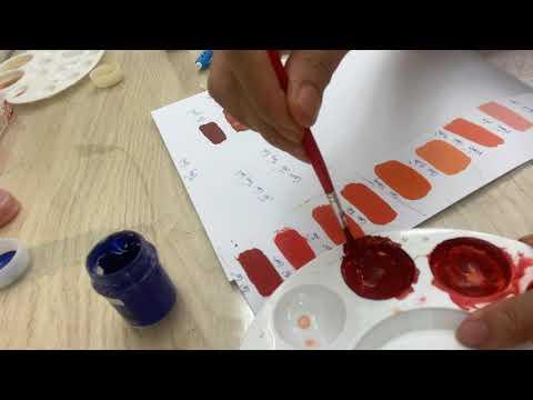 Bài 8:kĩ thuật pha màu môi  tông ấm sang tông lạnh #phunmoi 0919003498
