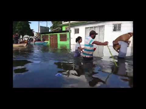 TRAS INUNDACIONES HISTÓRICAS EN TABASCO; UN HOMBRE CARGA A SU PERRITO PARA RESCATARLO!!!