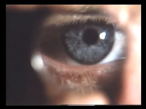 el-mundo-invisible---national-geographic-video-1979