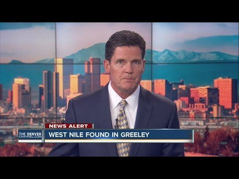 West Nile Virus found in Weld County