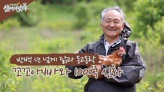 """(살어리랏다3) 100억 신화, 15만평 양계장 부지, 아~""""닭""""하고 보자!!!!(경남 산청 지리산자락, 이상호 회장)"""