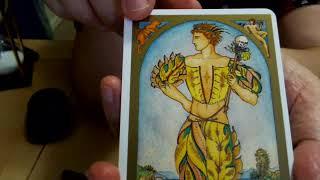 Renaissance Tarot Review and Walk Through