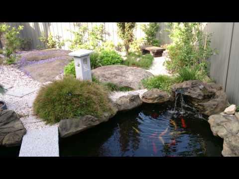 Amazing Japanese Garden with Universal Rock