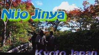 書院造の重要文化財指定民家 二条陣屋 京都府 美しい日本の庭
