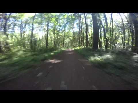 Sunday commute through Forest Park