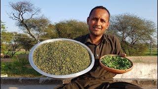 How to Make Dry Kasoori Methi at Home | Grandma Style | Village Style | Village Food Secrets